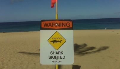 Las-playas-mas-peligrosas-del-mundo0