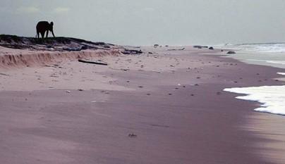 Las playas mas raras del mundo1