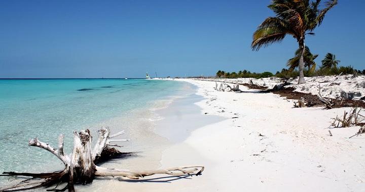 Buena concha en la playa espia - 2 part 8