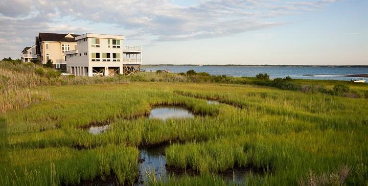 The Hamptons6