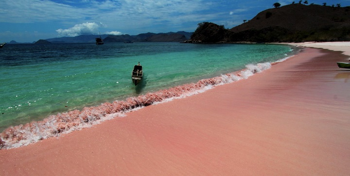Pink Beach Komodo2