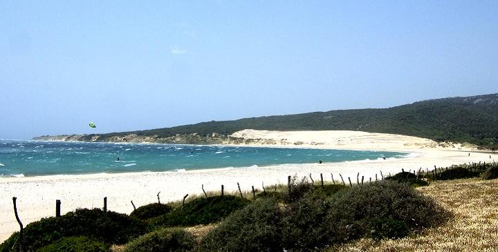 Playa Punta Paloma1