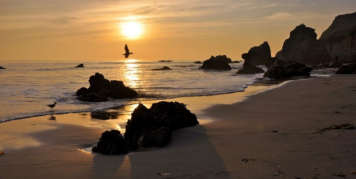El Matador Beach1