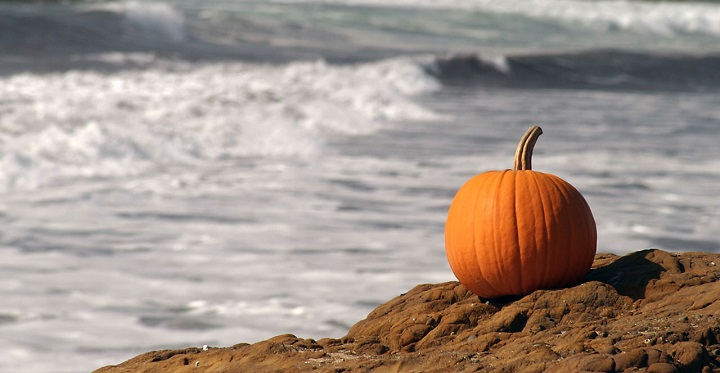 Halloween playa