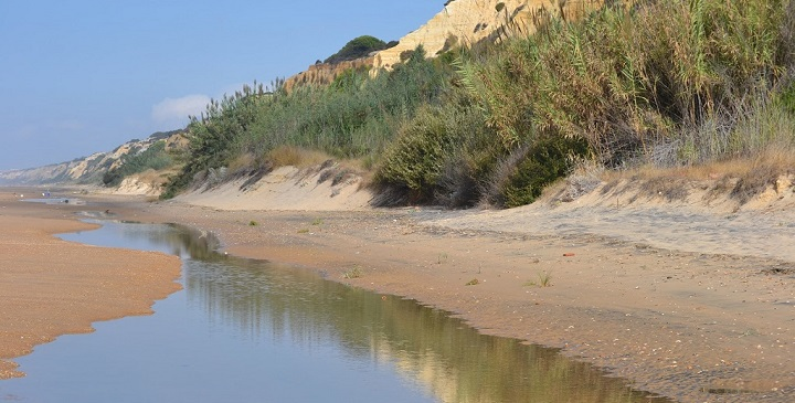 Playa de Rompeculos1