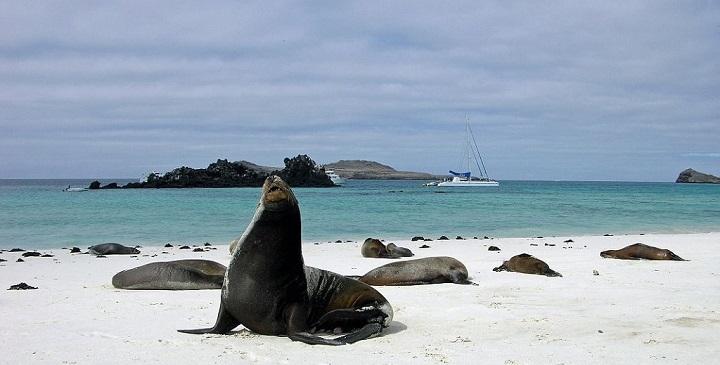 Bahia Gardner Islas Galapagos1