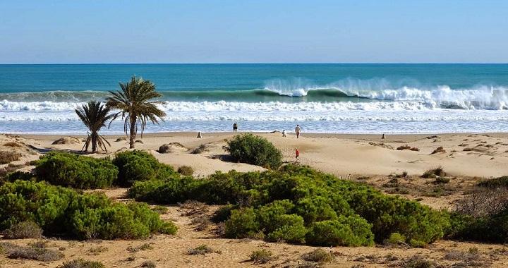 Carabassi Alicante