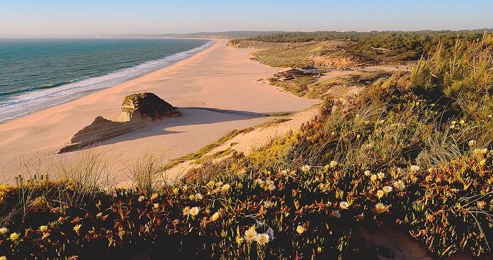 Playa de Meco1