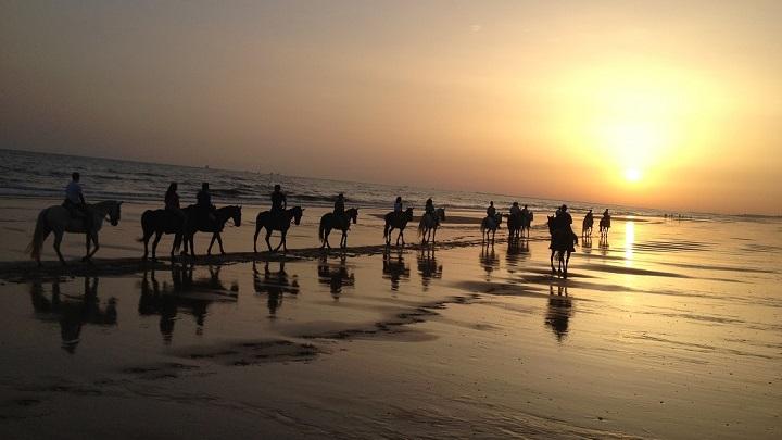 playa Donana1