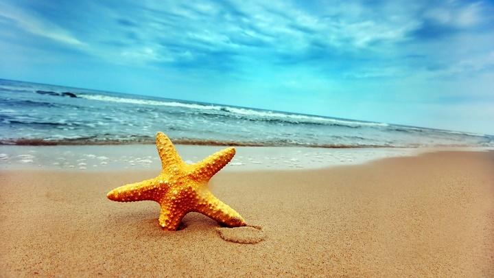 playa de las estrellas 2