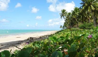 Praia do Patacho8