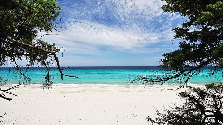 Saleccia-Beach-orilla